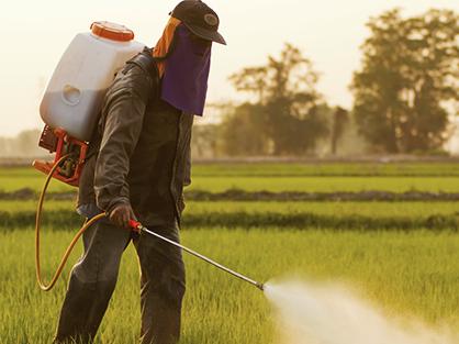arrosage de pesticides