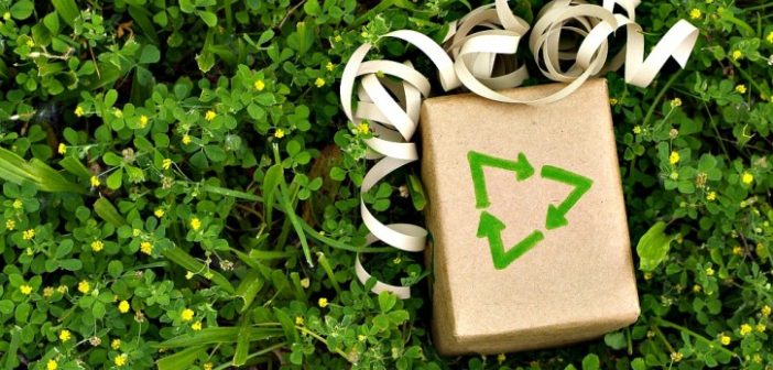 green-gift-e1449541129588