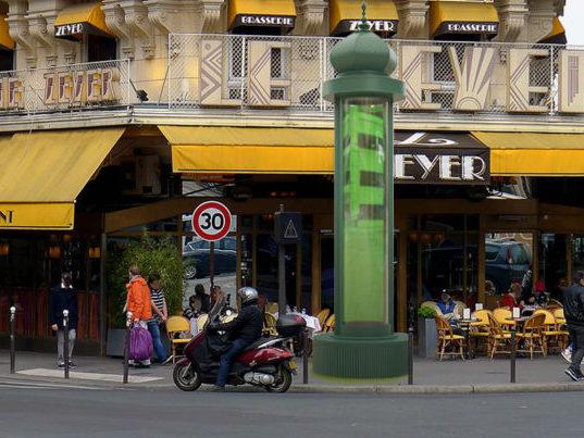 Colonne remplie d'algues à Paris pour la capture du CO2. Crédit Photo: Daily Geek Show